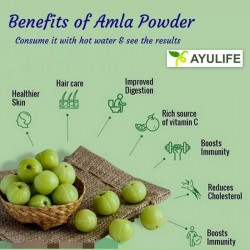 Amla Powder and its benefits in Ayurveda