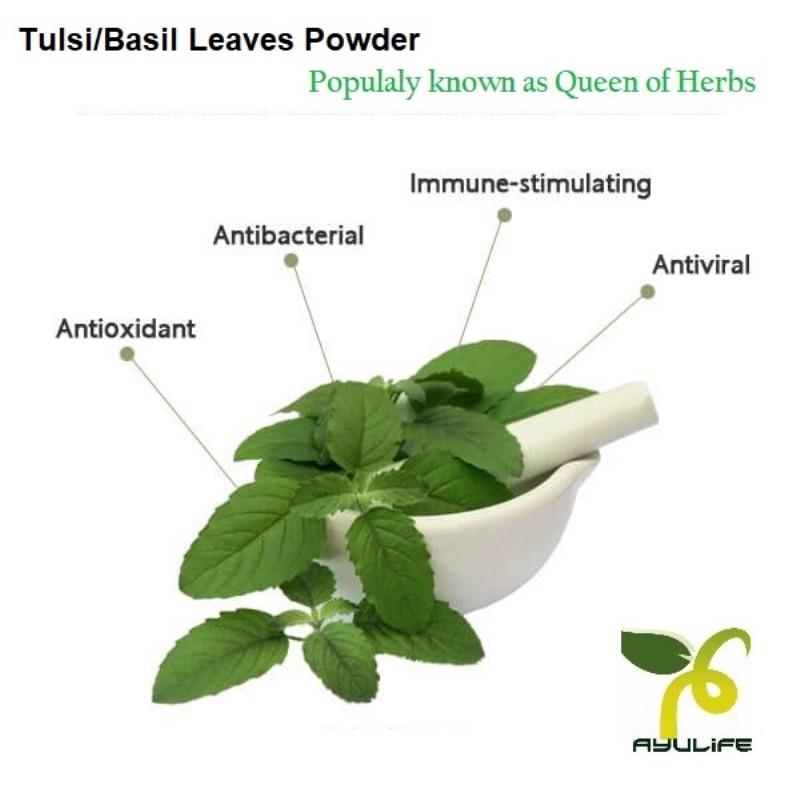 Tulsi Powder